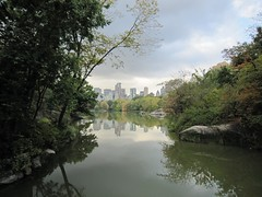 Central Park (hans.chay) Tags: park city nyc original autumn trees usa lake leaves yellow skyline clouds reflections pond day quiet cloudy manhattan central peaceful calm rainy serene