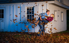 FRY_9665 (Dave Fryer Photography) Tags: ontario canada fall leaves engagement nikon celebration 60mm f56 dip d700