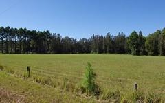 Lot 1 Manning Point Road, Mitchells Island NSW