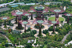 Supertree Grove, Gardens By The Bay Viewed From the Top Deck of the Marina Bay Sands Hotel, Singapore (Black Diamond Images) Tags: trees nature gardens architecture garden singapore fantasy attractions marinabay bestofsingapore singaporelandmarks gardensbythebay singaporegardens marinabaysands tourismattraction supertrees gardenssingapore supertreegrove supertreesgrove aerialboardwalk iconiclandmarksofsingapore worldsbestgardens