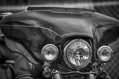 Harley-Davidson Motor Cycles (SergeK ) Tags: bw black harley harleydavidson trike motor hd davidson ultra hdr cycles triglide sergek