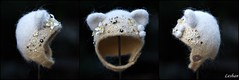 New Kitty Helmet