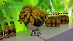 "#HummerCatering #Eventcatering #mobilebar #Smoothiebar #Fruchtdrink #Catering,  #Gesundheitstag in #Willich #Saint-Gobain • <a style=""font-size:0.8em;"" href=""http://www.flickr.com/photos/69233503@N08/15281588980/"" target=""_blank"">View on Flickr</a>"