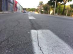 near view (Rodrigo Alceu Dispor) Tags: city view near asphalt crawling