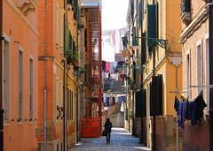 The neighbor's laundry (Fins from Budapest) Tags: street venice houses italy building canon italia fresh clothes laundry shutters venezia