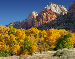 Zion Autumn Morning (James L. Snyder) Tags: park morning november autumn trees usa mountains southwest fall leaves rock horizontal wall utah nationalpark sandstone rocks colorful butte natural hill band meadow peak sunny bluesky 2006 row canyon cliffs foliage formation clear ridge craggy highdesert cottonwood jagged zion tall zionnationalpark cloudless lush soaring deciduous majestic monolith crags sedimentary looming slope bridgemountain precipice towering northfork luxuriant riparian lofty observationpoint virginriver grandeur zioncanyon coloradoplateau washingtoncounty twinbrothers mountainofthesun fremontcottonwood populusfremontii mountspry redarchmountain