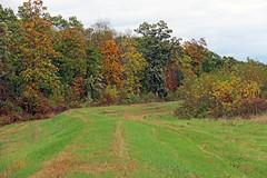 Rustic Roads 03 285 (kg.hill50) Tags: nature wisconsin rural rustic farmland farms roads backroads rusticroads03