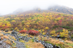 (GenJapan1986) Tags: 2014        japan travel landscape autumn  nagano nikond600 zf2 distagont225 mountain carlzeiss
