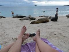 Galapagos - San Cristobal-189