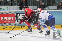"DEL15 Kölner Haie vs. Schwenningen Wild Wings 28.09.2014 020.jpg • <a style=""font-size:0.8em;"" href=""http://www.flickr.com/photos/64442770@N03/15383538315/"" target=""_blank"">View on Flickr</a>"