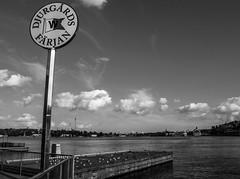 Djurgrdsfrjan (Emma Moring) Tags: sea sky sign ferry clouds boats boat dock sweden gulls sverige ferries grnalund skylt djurgrden stockhom skrgrd mlaren djurgrdsfrja frja hamn frjor
