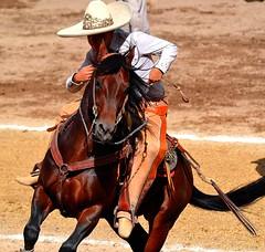 Movimiento (Zlatan Papayalopulus) Tags: life horse man game mexico caballo movement cowboy boots country mexicans rancho