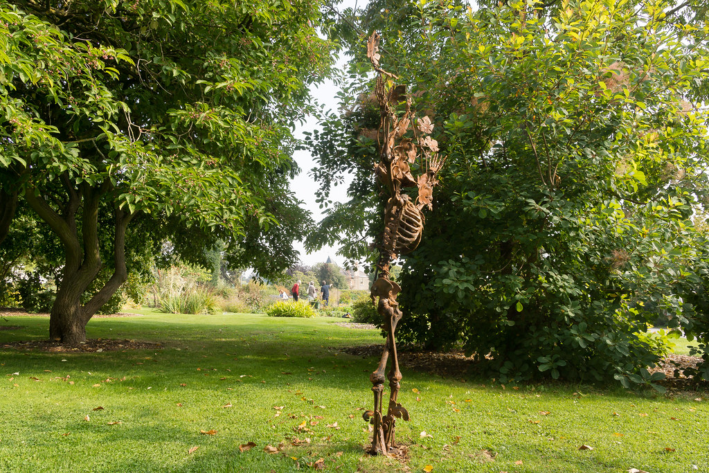 Tree Of Knowledge By Brian Byrne - Sculpture In Context 2014-1165
