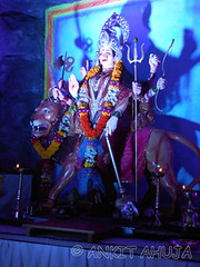 DSCN0485 (ankit10217) Tags: pune durga shakti parvati ambika sati bhairavi katyayani bhuvaneshwari chinnamasta navdurga mahagauri kaalratri siddhidatri kushmanda chandraghanta dhumavati skandamata brahmacharini vaishnomaa shailaputri durgapuja2014 navratri2014 ankitahuja shivaradni bhavaani navratridurgapuja2014