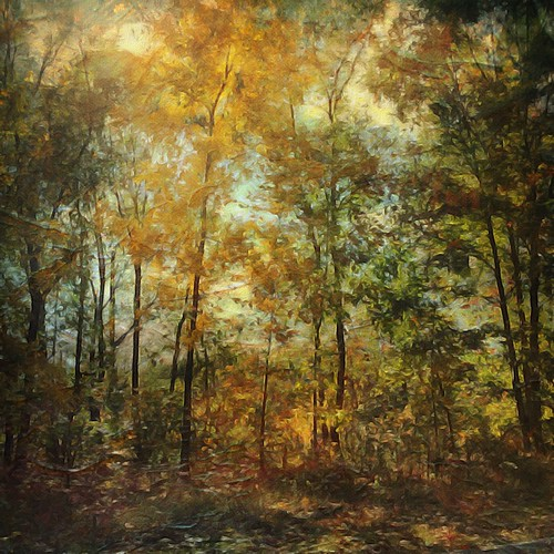 The goldenrod is yellow, The corn is turning brown, The trees in apple orchards With fruit are bending down.Helen Hunt Jackson