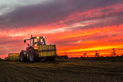 129A1121.jpg (Fotos aus OWL) Tags: landwirtschaft harvest silo mais agriculture silage ernte biogas hckseln