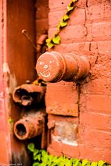 Smiley (John Skelson) Tags: newyorkcity nikon streetphotography statenisland statenislandferry newyorkharbor johnskelson statenislandnorthshore nikon50mm14afd nikond610 wwpw2014 worldwidephotowalk2014 scottkelbysworldwidephotowalk2014statenislandny wwpwstatenislandny2014