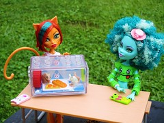 I found a snack (flores272) Tags: honeyswamp toralei monsterhigh monster monsterdoll doll dolls toy toys outdoors bratzclothing bratz cage mouse rat