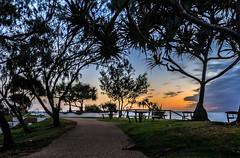 """snapper rocks dawn"" (rod marshall) Tags: sunrise snapperrocks ocean dawn"