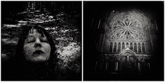 Like a cathedral...... (Kein Grund) Tags: iphoneography iphone6 blackie diptic superimpose hipstamatic norway trondheim self dome forest naturaldome nachwemrufstdu amende forestpath nidarosdom nidaroscathedral