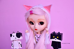Nyan! | Pullip Kirsche (·Kumo~Milk·^^) Tags: pullip rewigged wig rechipped eyechips kirsche sugar obitsu eyelashes gloss doll groove junplanning nyanboard danbo danboard minidanbo figure toy cute kitty pink