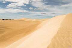 Freedom (Thibaud Chanfray) Tags: dunes coffin bay national park southaustralia sanddunes sand desert alone human landscape