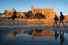 Parc de la Mar (Mallorca) (el vuelo del escorpión) Tags: seu cathedral catedral palma mallorca baleares balearic islands españa spain rain lluvia reflections reflejos winter invierno