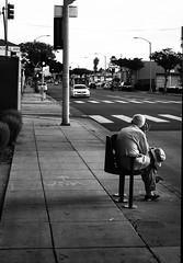I'm Waiting for the USA (Feldore) Tags: man sitting street waiting usa santa monica california looking for america feldore mchugh em1 olympus 1240mm candid old elderly bus stop