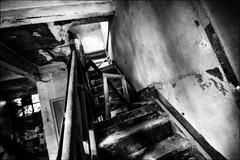 La fenêtre est tombée dans l'escalier / The window was fallen  down the stairs (vedebe) Tags: escaliers fenêtre fenêtres abandonné usinedésaffectée decay urbain urbex ville city rue ruines street noiretblanc netb nb bw monochrome