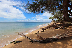Ka'anapali Beach (russ david) Tags: kaanapali beach maui hawaii september 2016 hi pacific ocean island ハワイ 風景