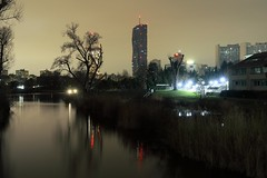 Dead waters (No_Mosquito) Tags: vienna austria city urban night dark lights water reed architecture skyline silent canon powershot g7x mark ii skyscraper long exposure kaisermühlen dctower unitednations altedonau reflection river cityscape building tower outdoors tree modern