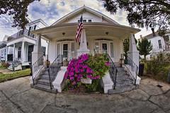 Duplex (msuner48) Tags: d750 acr5 cs4 house duplex algierspoint neworleans flag flowers sign nikcollection topazlabs rokinon8mmf35
