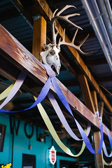 Keep Denton Thrashing (BurlapZack) Tags: pentaxk1 pentaxfalimited43mmf19 vscofilm pack01 dentontx keepdentonthrashing danssilverleaf bar skull deer antlers streamers decoration celebration inmemoryof nickthrasher inmemoriam