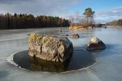 Rock on Icy Lake (talaakso) Tags: finland finnishlandscape ice järvi jää pinussylvestris rock terolaakso järvimaisema kivi kivikko lake lakelandscape mäntypine talaakso pälkäne pirkanmaa fi