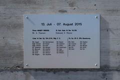 Chur - Mabey Delta Bridge (Kecko) Tags: 2017 kecko swiss switzerland schweiz suisse svizzera graubünden graubuenden gr chur rossboden sand schiessplatz waffenplatz militaer militär armee army military bridge brücke mabey delta rhine river rhein rheinbrücke europe rheintalbild swissphoto geotagged geo:lat=46853290 geo:lon=9494870