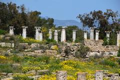 DSC_0226 (mark.greefhorst) Tags: cyprus northerncyprus salamis ancientworld roman