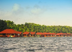 Row of floating cottages in an island resort. (Sudhakar Madala) Tags: palmtree cottage nature southindia india tourism traveller travel photography arabiansea sea beautiful colorful amazing view eos green red vacation kerala backwaters