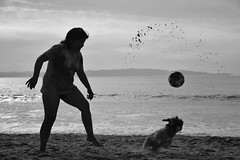 3 BW (ignaciovidelahidalgo) Tags: chile dog beach ocean sea tome nikon nikond3300 sand
