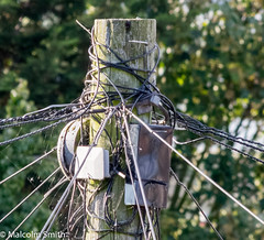 The Top Of The Telegraph Pole (M C Smith) Tags: telegraph pole wires wood boxes trees green pentax k3ii