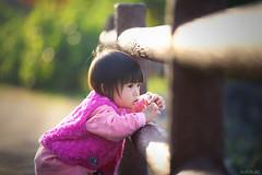 少女的凝視 (M.K. Design) Tags: 台灣 家庭 親子 散步 公園 遛小孩 人像 嬰兒 兒童 淺景深 散景 定焦鏡 長焦 壓縮感 尼康 taiwan family infant park portrait nikon d800e afs 105mmf14e tele bokeh primelens hdr sunshine 陽光 逆光