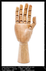 Wooden hand (__Viledevil__) Tags: wooden hand art body bodypart concept dummy figure finger gesture human inanimate manmade mannequin mimic model object palm sign symbol wood woodenhand