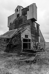 NT3.0033-CW1605618_38674 (LDELD) Tags: palouse pullman washington unitedstates us old abandoned agricultural building grainery fallingdown granary