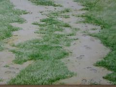 Wolfram Zimmer painting: Stop - Halt (ein_quadratmeter) Tags: wolfram zimmer bilder kunst malerei gemälde painting konzeptkunst concept art objektkunst objekt mein freiburg burg birkenhof kirchzarten ausstellung ausstellungen peinture exhibition exhibitions leben geschichte kaiserstuhl tuniberg wine growing vineyard terrassierung hang hangbefestigung auto reifen wetter witterung regen terracing slope mounting car tire weather weathering rain matsch fusspuren mud footprints