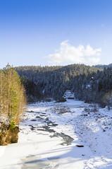 DSC01950 (igor_shumega) Tags: зима сониа580 снег природа пейзаж лес дерево река мороз