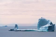 Iceberg (Dolores Harvey) Tags: newfoundland newfoundlandandlabrador newfoundlandlabrador iceberg icebergs doloresharvey d800 canvassingtheneighbourhood canvassingtheneighbourhoodcom canvassingtheneighbourhoodphotography canada coastline pinksky ocean oceanview atlanticocean