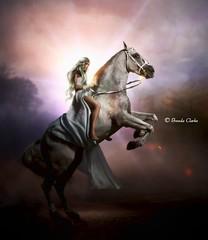 Silver rider (~Brenda-Starr~) Tags: allrightsreserved december2016 horse rider woman female fantasy riding heroine imagination bareback