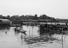 Ubon Ratchathani - Thailand (jcbkk1956) Tags: canoe boat worldtrekker floating restaurants thai son father parenting blackwhite mono wb100 samsung beach water play swimming family children man munriver thailand ubonratchathani pontoons rafts