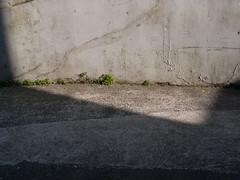 2005-04-01-0107.jpg (Fotorob) Tags: lichtschaduw engeland erfscheiding muur cornwall voorwerpenoppleinened england stives