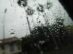 April 18: Rainy Day