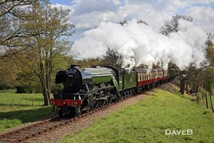 19th April 2017. Flying Scotsman and Service trains at the Bluebell (Dangerous44) Tags: bluebell railway steam engine locomotive lner a3 60103 flying scotsman
